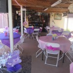 Inflatable jumps, tables, chairs, and other supplies for a Disney Princess Birthday Party